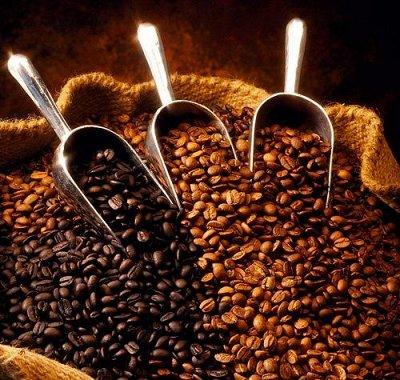 Tasty Coffee-Specialty класса.  — Азия — Кофе и кофейные напитки