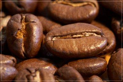 Tasty Coffee-Specialty класса.  — Марагоджипы — Кофе и кофейные напитки