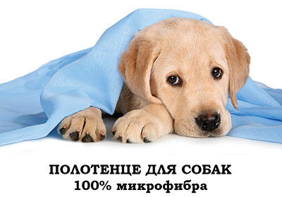 Микрофибра  для уборки и бани, КПБ, подушки, полотенца — Полотенца и попоны для животных  — Для животных