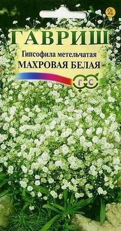 Цветы Гипсофила Махровая Белая Метельчатая/Гавриш/цп 0,1 гр.