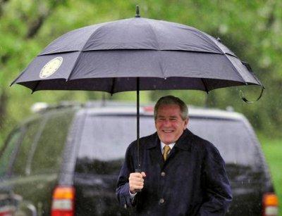 """Очки, зонты, кошельки и много других аксессуаров. Наличие! — Зонты-""""антиштормы"""" — Зонты"""