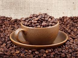 Tasty Coffee-Specialty класса. Кофе.   — Микролоты для фильтра — Кофе и кофейные напитки