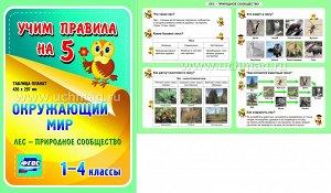 ФГОС,Окружающий мир. Лес - природное сообщество. 1-4 классы.,(Таблица-плакат 420х297),(А3 свернут в А5)