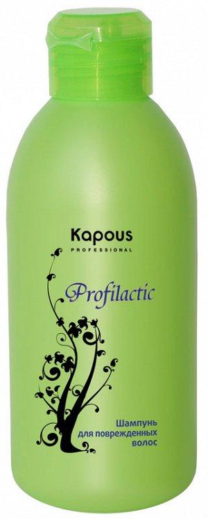 Шампунь для поврежденных волос серии «Profilactic» 250 мл