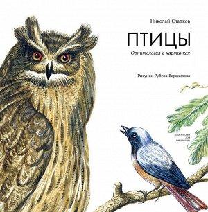 Николай Сладков: Птицы. Орнитология в картинках