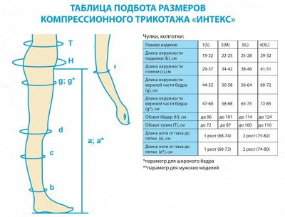 26. INTEX: Компресс: трикотаж, бинты, бандажи, пояса — Таблица подбора размеров — Колготки, носки и чулки