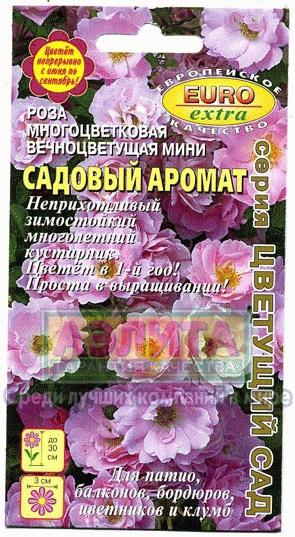 Цветы Роза Садовый Аромат/Аэлита/цп