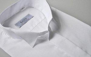 Белая рубашка с коротким рукавом 43/182-188
