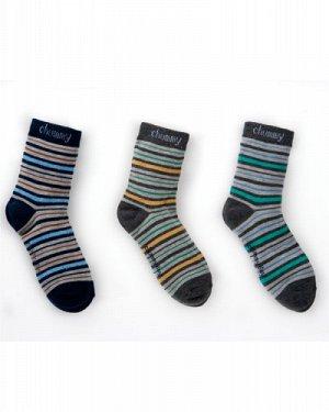 Носки для мальчиков C3VBBMZA05025 р-р2