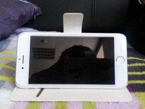 Чехол-книжка Тоторо для IPhone6Plus