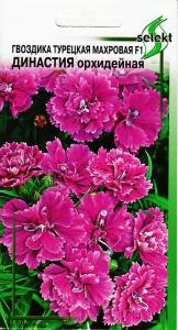 Гвоздика тур. махр.F1 Династия, орхидейная