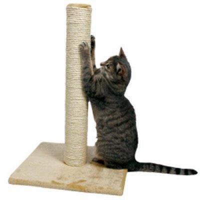 Хвостатая закупка для ваших питомцев-87 — Когтеточки и комплексы — Для животных