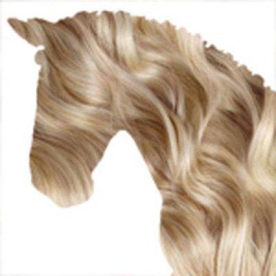 Хвостатая закупка для ваших питомцев-87 — Лошадиные гели, шампуни, крема — Для животных