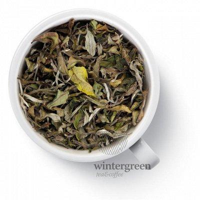 Мегамаркет: ЧАЙ, КОФЕ, ШОКОЛАД - Июль*20 — Плантационный чай Непал — Чай
