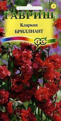 Кларкия Бриллиант, изящная* 0,1 г