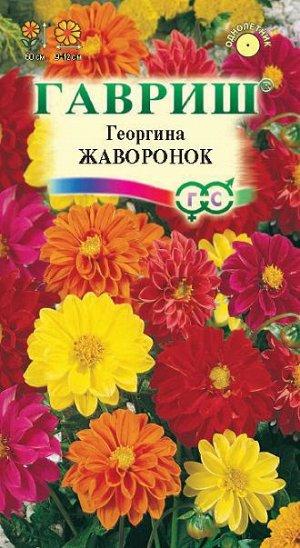 Георгина Жаворонок, смесь 0,3 г
