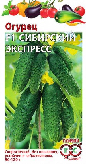 Огурец Сибирский экспресс F1 10 шт. автор.