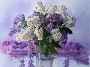 Масло Queen Special Lilac (Сирень) 50 мл