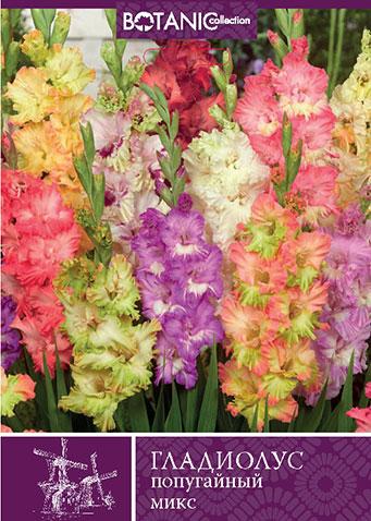 7 цветов! Шикарные пакетированные луковицы! предзаказ!  — ГЛАДИОЛУСЫ_2 — Декоративноцветущие
