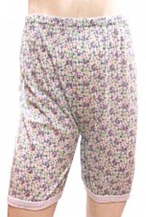 Панталоны цветные