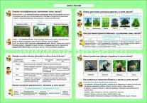 ФГОС Окружающий мир. Зона лесов. 1-4 классы. Таблица-плакат 420х297 ,(Формат А3 свернут в А5)