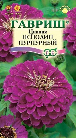Цинния Исполин пурпурный 0,3 г