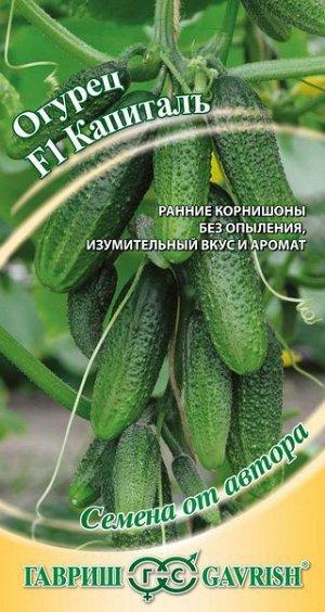 Огурец Капитал F1 10 шт. автор.