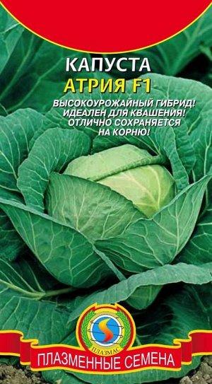 Капуста б/к Атрия F1