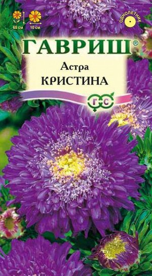 Астра Кристина, однолетняя (принцесса, фиолетовая) 0,3 г DH