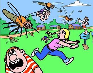 97 Огромный выбор товаров для дома!Батарейки, полки, плечики — Защита от насекомых и комаров. Цены от 50 рублей — Туризм и активный отдых