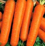 Морковь гранулир. Настена 300 шт. гель