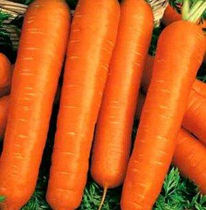 Морковь на ленте Настена 8 м