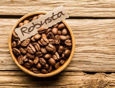 Tasty Coffee-Specialty класса.  — Робусты — Кофе и кофейные напитки