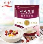 Закваска Накагава для домашнего йогурта