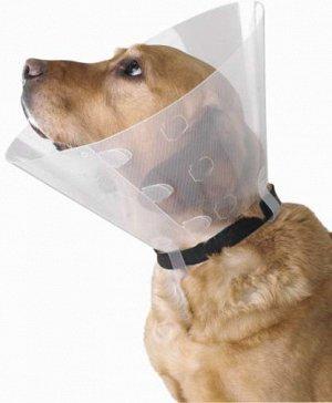 Защитный воротник 15 см для собаки среднего размера