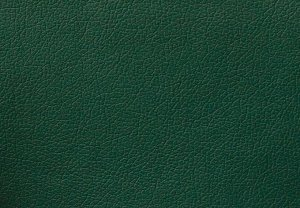 Кожа иск. DOMUS green