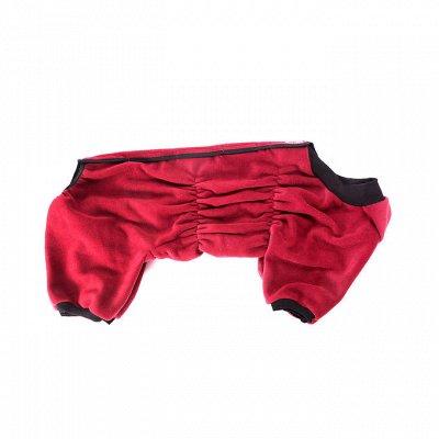 ЗооДом, PROхвост, Probalance, OSSO — Одежда для собак OSSO утепленная — Аксессуары и одежда