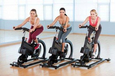 61*Товары для спорта, туризма и путешествий* — Велотренажеры — Фитнес