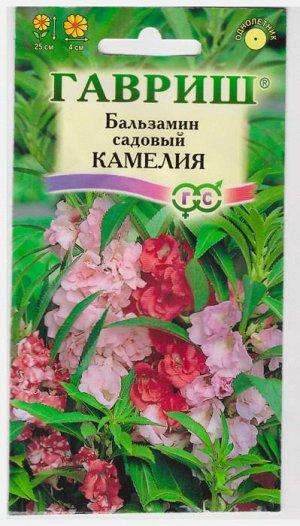 Бальзамин Камелия садовый (Код: 10482)