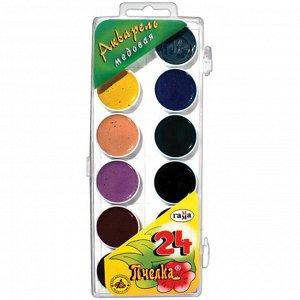 "Акварель Гамма ""Пчелка NEW"", медовая, 24 цвета, без кисти, пластик. упак., европодвес"