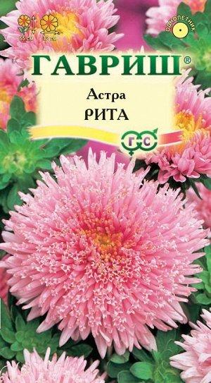 Астра Рита, однолетняя, (принцесса розовая) 0,3 г DH