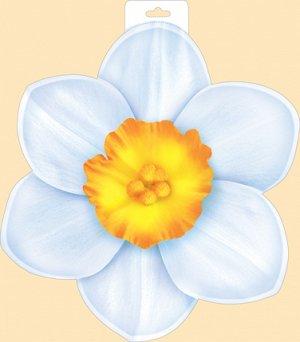 29.383.00 Плакат А3 Нарцисс...
