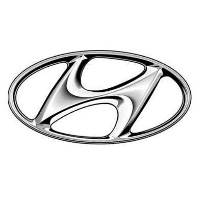 IVITEX эксперт Чистоты в Вашем авто — HYUNDAI — Аксессуары