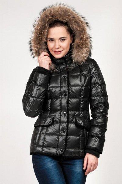 Ликвидация Piniolo + одежда и пальто. Скидки до 50% — Пуховики Batterflei и Royal Panda! Без орг% и плащи XР — Пуховики