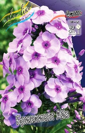 Пакетированные многолетники!олетники! — Флоксы — Семена цветов