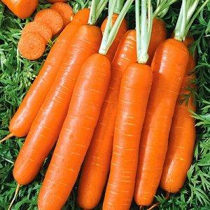 Морковь Романс F1 ~3372