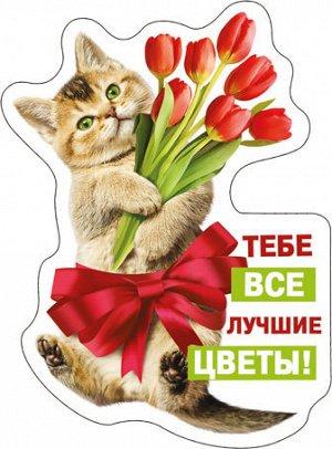 51.16.604 Виниловый магнит Тебе все лучшие цветы!...