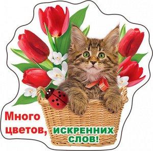 51.16.629 Виниловый магнит Много цветов, искренних слов!