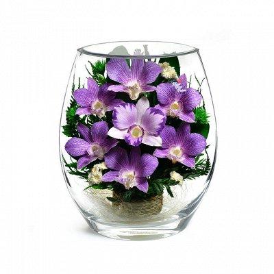 Все в наличии из разных закупок — Цветы, которые не вянут! Очень красивые