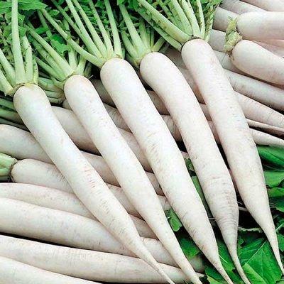 Семена Сибирской селекции — ДАЙКОН — Семена овощей